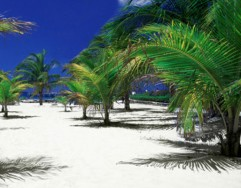 Incentive Travel Packages
