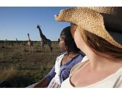 Kruger National Park  Experience